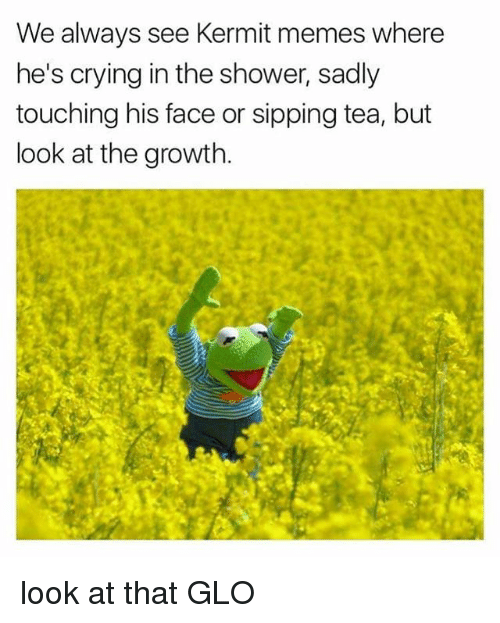 we-always-see-kermit-memes-where-hes-crying-in-the-20984676